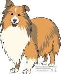 dogs_shetland_sheepdog classroom clip art